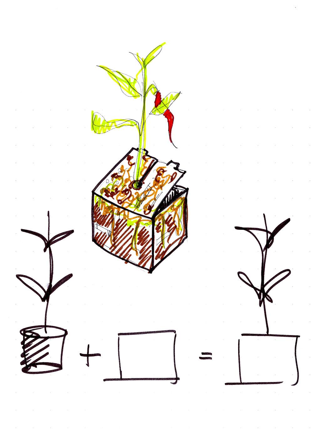 progetto packaging il vivaio